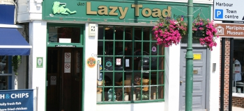 -88 The Lazy Toad