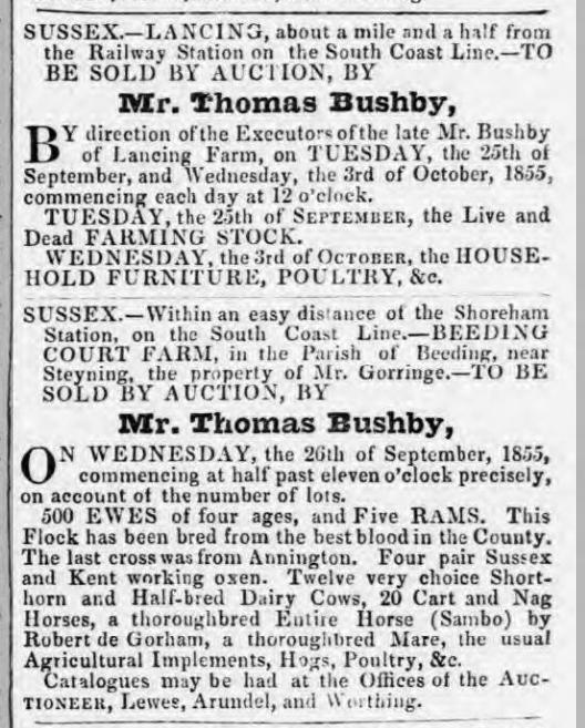 1855hc 28th August SA