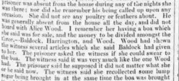 1837gb 28th November Brighton Patriot Part Two