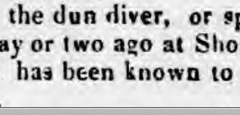 1841ac 18th January Sussex Advertiser