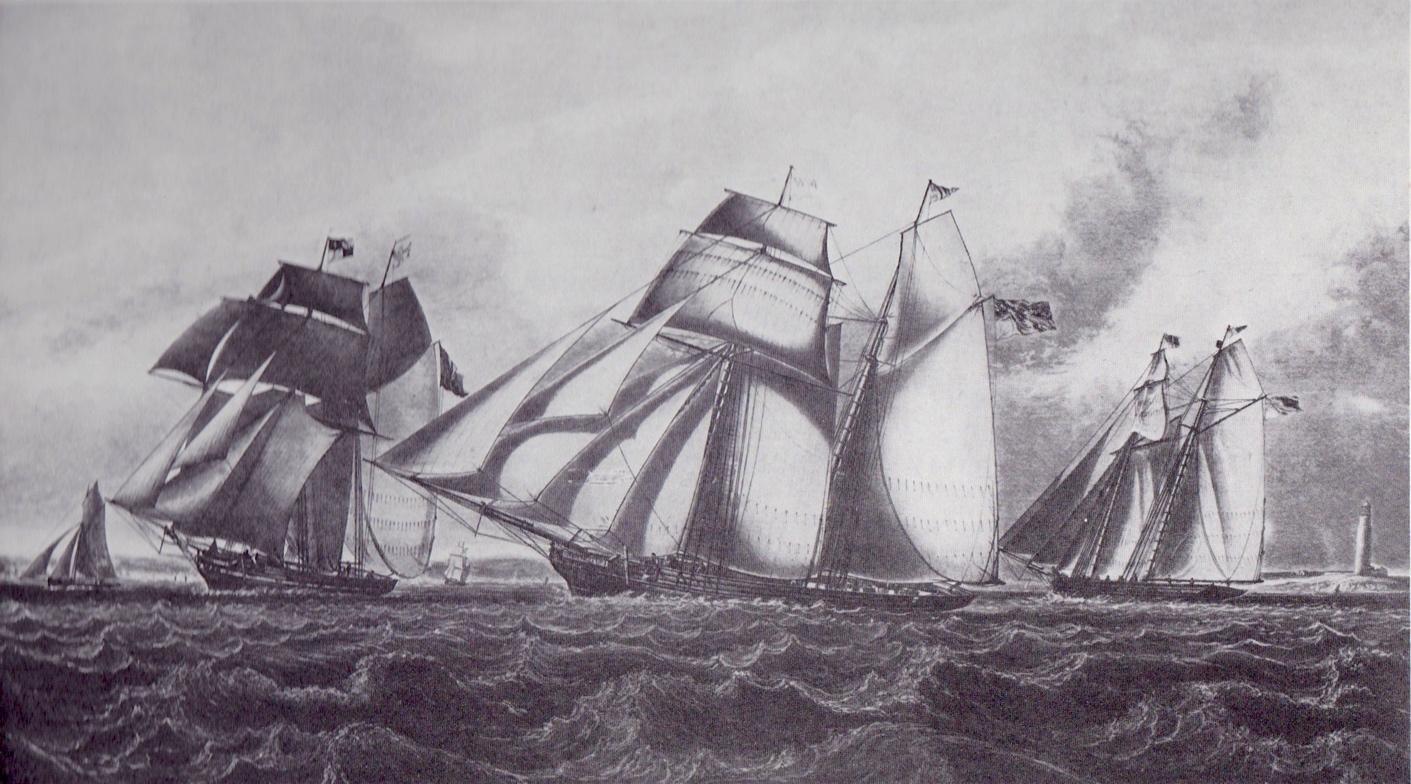 Alexander Martha Rapid