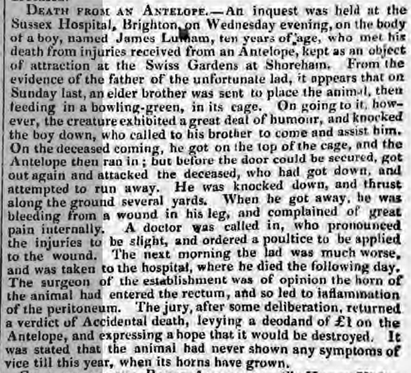1840g 19th July The Era